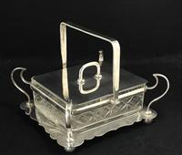 Late Victorian Silver Plated and Glass Sardine Dish. (3 of 5)
