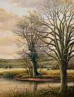 Fishing The River Ouse - Lovely Vintage North Yorkshire Riverscape Oil Painting (4 of 12)