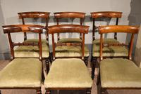 Set of Six William IV Rosewood Dining Chairs (2 of 8)