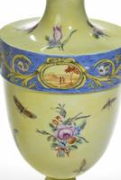 Rare Pair of 18th Century Bueno Retiro Pale Yellow Ground Vases (3 of 3)
