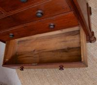 Chest of Drawers Mahogany 19th Century (2 of 7)