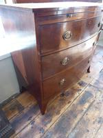 Regency Bow Chest of Drawers Sphinx Handles (6 of 8)