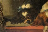 After Landseer - King Charles Spaniels - Oil on Canvas - Early 20thc (2 of 4)