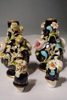 Most Attractive Pair of Late 19th Century Coalbrookdale Perfume Bottles (2 of 6)