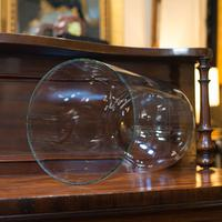 Antique Display Dome, English, Glass, Mahogany, Taxidermy, Showcase, Victorian (9 of 10)