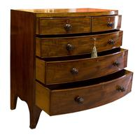 Regency Period Mahogany Bow-fronted Chest (2 of 7)