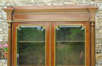 19th Century French Directoire Style Mahogany Bookcase Cabinet (3 of 11)