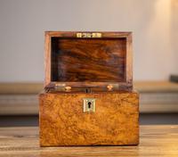 Burr Walnut Tea Caddy 1870 (9 of 10)