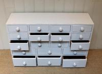 Early 20th Century Painted Collectors' Drawers (4 of 5)