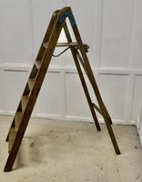 Tall 19th Century Wooden Step Ladder (2 of 7)