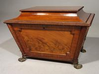 Good Regency Period Wine Cooler in the Manner of Gillows of Lancaster (3 of 6)
