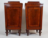 Pair of Regency Mahogany Pedestal Cabinets
