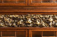 Mid 19th Century Satinwood Cabinet with Elaborate Giltwood Decoration (7 of 7)
