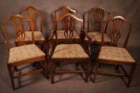 Set of 6 Georgian Dining Chairs  Hepplewhite (2 of 5)
