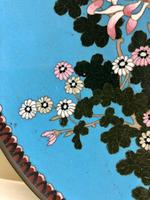 Antique Pair of Japanese Cloisonne Plates, Meiji Period (11 of 12)