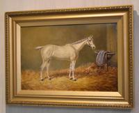 Beverley, Oil Painting of a Horse by William Eddowes Turner (2 of 7)