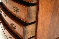 Antique Burr Walnut  Chest of  Drawers (11 of 12)
