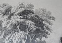 John Berney Ladbrooke Attributed Norwich School c.1860, Fine Large Sketch (4 of 6)