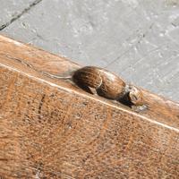 Mouseman Oak Kerb Fender (6 of 6)