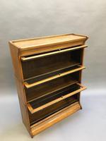 Globe Wernicke Type Bookcase (8 of 13)