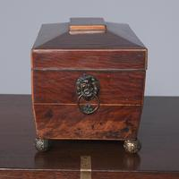 Georgian Mahogany Sarcophagus Shape Tea Caddy (7 of 9)