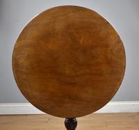 George III Mahogany Tripod Table (6 of 6)