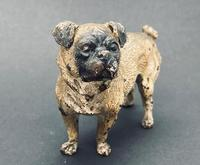 Good Antique Austrian Cold Painted Bronze Standing Pug, Circa 1890, Marks to Base (3 of 8)