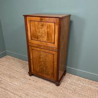 Regency Mahogany Antique Estate Cupboard with Fitted Interior (5 of 8)