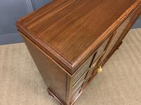 Burr Walnut Bookcase/Side Cabinet (11 of 15)