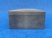 1930s Shagreen Table Box (6 of 10)
