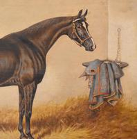 Monarch, Oil Painting of a Horse by William Eddowes Turner (5 of 8)