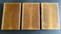 1869  Works of Thomas Carlyle,  10  Volumes Bound in  Fine Full Tree Calf Leather (4 of 5)