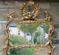 Stunning Twin Plate Rococo Mirror 19th Century (7 of 8)