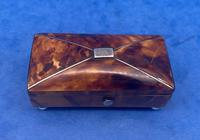 Tortoiseshell Miniature Casket (5 of 10)