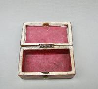 Early Victorian Tortoiseshell Needle Case c.1840 (4 of 7)