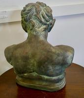 Bust of a Young Satyr in a Bronze Patina (2 of 7)