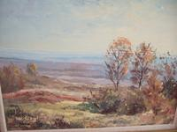 Charles Brooker Oil on Board - Ashdown Forest (2 of 4)