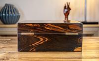 Decorative Coromandel Table Box 1850 (4 of 8)