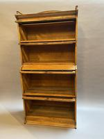 Globe Wernicke Type Bookcase by Lebus (4 of 14)