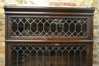 1920s Globe-Wernicke Bookcase (4 of 7)