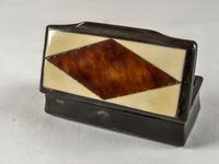 Early Victorian Horn Snuff Box (2 of 5)