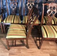 Set of Ten Georgian Style Mahogany Dining Chairs (3 of 13)