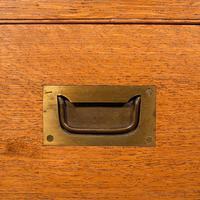 Antique Collector's Specimen Case, English, Oak, Chest, Jewellery Box, Edwardian (12 of 12)