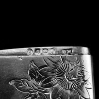 Antique Victorian Solid Silver Vesta Case Aesthetic Style Engravings - Joseph Whitten 1885 (6 of 9)