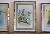 Set of Three Early 20th Century Silk Bird Paintings (3 of 10)