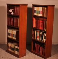 Pair of Open Bookcase - 19th Century in Mahogany (8 of 9)