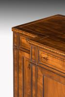 Regency Period Mahogany Breakfront Side Cabinet (3 of 6)