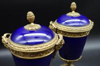 Good Pair of Late 19th Century Sèvres Type Porcelain Lidded Vases (2 of 4)