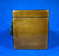 Late 18th Century Fruitwood and Applewood Twin Tea Caddy (7 of 21)