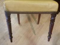 Set of 6 Regency Period Mahogany Dining Chairs (5 of 6)